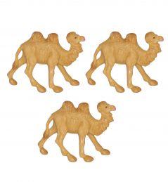3 Cammelli
