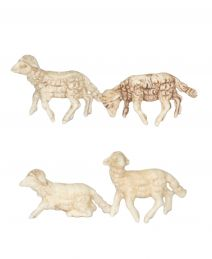 24 pecore