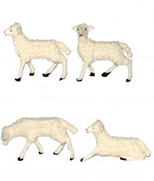 8 pecore