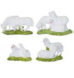 4 gruppi di pecore