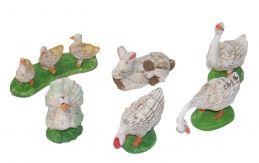 6 animali da cortile